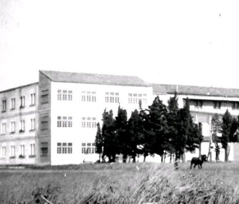 Ancien abattoir - 1950 - Photo JL Lombardi -Archives municipales
