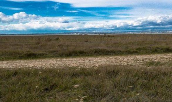 Zone humide des Paluns - Photo Régine Cabrera