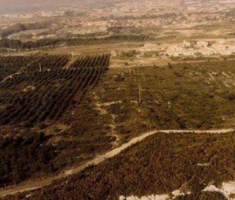 Reboisement de la colline 1985 - Photo Archives municipales