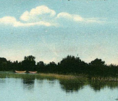 Les bords de l'étang - la Signore - Le Joli Bois
