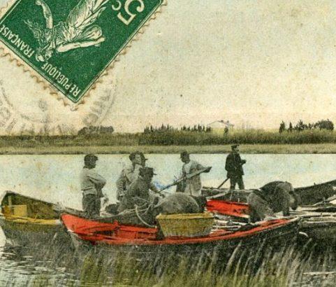 La battue aux foulques - L'arrivée - carte postale ancienne
